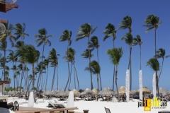 paradisus palma real19Palacalle